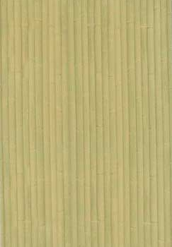 Плитка облицовочная ПО7БМ101 249х364