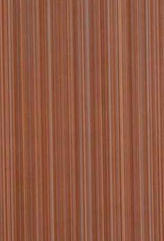 Плитка облицовочная ПО9ЖС404 249x500